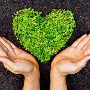 Cội nguồn của từ thiện là tâm (Lưu Đình Long)